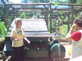 Coop roof collects rainwater for chickens to drink