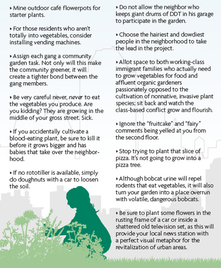 City Gardening Wisdom